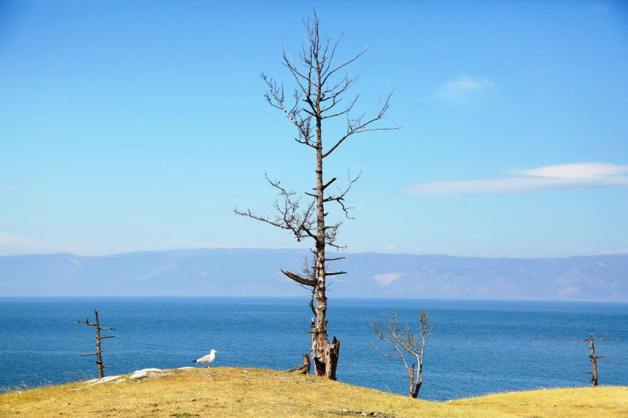 <p>Озеро Байкал.<br /> Фото: Андрей Фёдоров.</p>